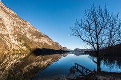 Lago Bohinj Fotografia Stock Libera da Diritti