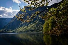 Lago Bohinj, Eslovênia, Europa Imagens de Stock Royalty Free