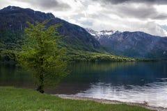 Lago Bohinj, Eslovênia, Europa Fotografia de Stock