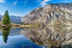 Lago Bohinj no parque nacional de Triglav, Eslovênia fotografia de stock royalty free