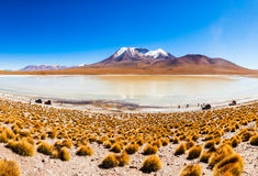 Lago, Bolivia Altiplano Imagen de archivo