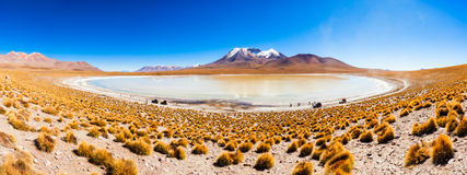 Lago, Bolivia Altiplano Imágenes de archivo libres de regalías