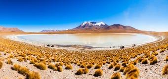 Lago, Bolivia Altiplano Fotografía de archivo