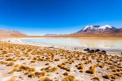 Lago, Bolivia Altiplano Fotos de archivo