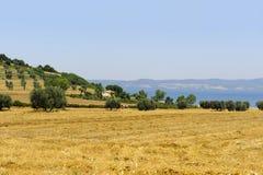 Lago Bolsena (Lazio, Italia) Imagen de archivo libre de regalías