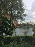 Lago bonito foto de archivo