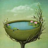Lago bonito com flores. Imagens de Stock