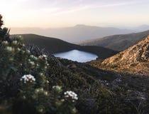 Lago bonito do esperance do lago do pico do hartz da opinião do por do sol na montanha de Tasmânia Foto de Stock Royalty Free