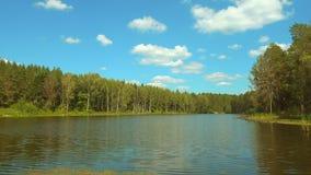 Lago bonito no dia ensolarado, ondas pequenas da floresta no surfacet da água filme