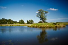 Lago bonito no parque de Dyrehave, Dinamarca Fotos de Stock