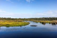 Lago bonito no parque nacional de Yanche na Austrália Ocidental Imagem de Stock Royalty Free