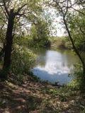 lago, bosque, aguamarina, paisaje foto de archivo