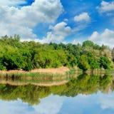 Lago, bosque del verano en los bancos y cielo imagen de archivo libre de regalías