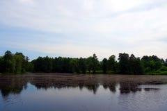 Lago, bosque y cielo Foto de archivo