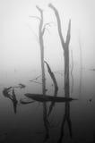 Lago brumoso Imagen de archivo libre de regalías