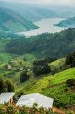 Lago Bunyonyi osservato dal livello alto Fotografia Stock Libera da Diritti