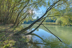 Lago Caccamo em Itália Foto de Stock Royalty Free