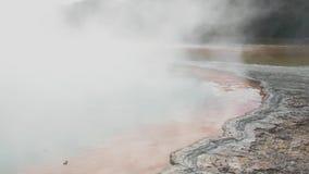 Lago caliente en el área geotérmica de Waiotapu, Rotorua, Nueva Zelanda champagne Pool almacen de video