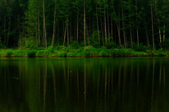 Lago calmo Immagini Stock