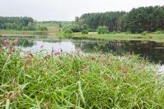 Lago calmo Fotografie Stock Libere da Diritti
