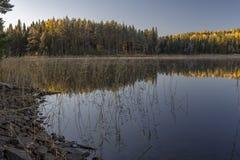 Lago calmo di mattina con poche nebbia e riflessioni in fotografie stock libere da diritti