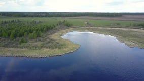 Lago calmo do espelho com as nuvens refletidas perto do prado verde filme