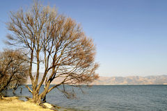Lago calmo Erhai Fotografia Stock