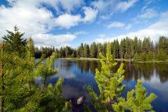 Lago calmo mountain Imagens de Stock