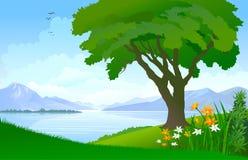 Lago calmo, uma árvore só e céu azul vasto Fotos de Stock