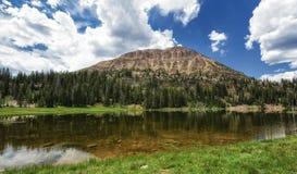 Lago calvo Ovelooking Moosehorn della montagna Fotografie Stock Libere da Diritti