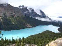 Lago Canada dog Immagini Stock