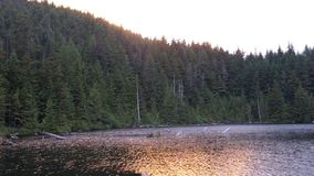 Lago canadese Fotografie Stock Libere da Diritti