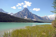 Lago canadese waterfowl delle Montagne Rocciose Fotografia Stock