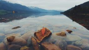 Lago Canier, isola del sud, Nuova Zelanda Fotografia Stock Libera da Diritti