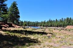 Lago canyon das madeiras, Coconino County, o Arizona, Estados Unidos Fotos de Stock Royalty Free