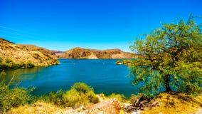 Lago canyon y el paisaje del desierto del bosque del Estado de Tonto Foto de archivo libre de regalías