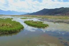 Lago Caohai nella provincia di Yunnan fotografia stock