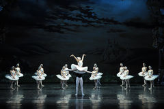 Lago casto swan di dea-balletto fotografia stock libera da diritti