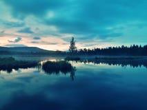 Lago cenagoso con el nivel del agua del espejo en el bosque misterioso, árbol joven en la isla en centro Color verde fresco de la Foto de archivo