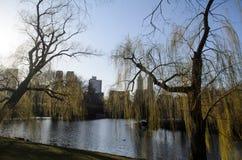 Lago central park Foto de Stock