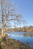 Lago central Park Immagini Stock