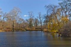 Lago central Park con la riflessione degli alberi Fotografia Stock