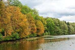 Lago cerca del bosque en la estación del otoño Imágenes de archivo libres de regalías