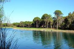 Lago cerca del curso del oro Foto de archivo