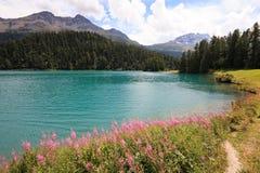 Lago Champfer Imagens de Stock Royalty Free