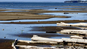 Lago Champlain, Vermont, niveles del agua baja Fotografía de archivo libre de regalías