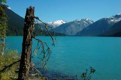 Lago Cheakamus Fotografia Stock Libera da Diritti