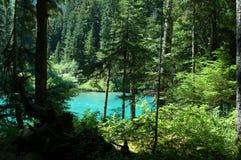 Lago Cheakamus Fotografie Stock Libere da Diritti