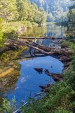 Lago Chico lake in National Park Huerquehue. Chile royalty free stock photography