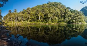 Lago Chico lake in National Park Huerquehue. Chile stock photos